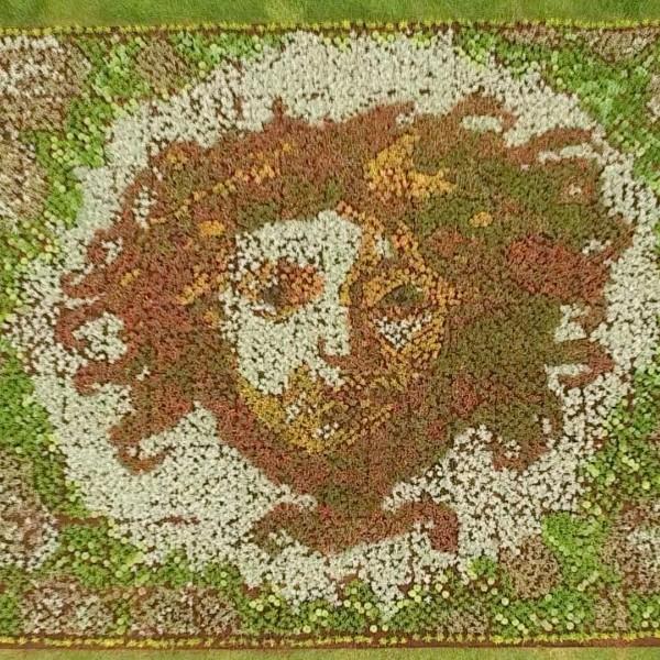 M H Carpets Sunderland